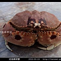 逍遙饅頭蟹_02.jpg