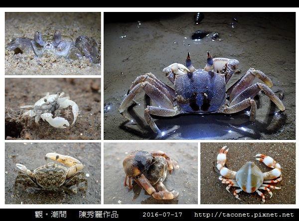 陳秀麗作品-15.jpg