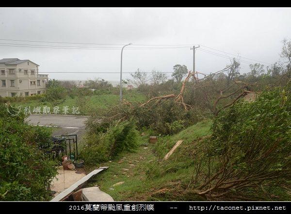 2016莫蘭蒂颱風肆虐後的烈嶼_001.jpg