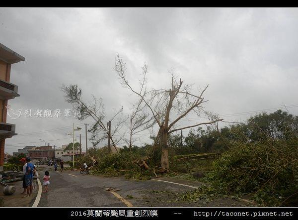 2016莫蘭蒂颱風肆虐後的烈嶼_002.jpg