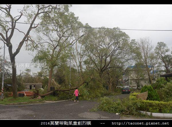 2016莫蘭蒂颱風肆虐後的烈嶼_003.jpg