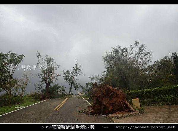 2016莫蘭蒂颱風肆虐後的烈嶼_006.jpg