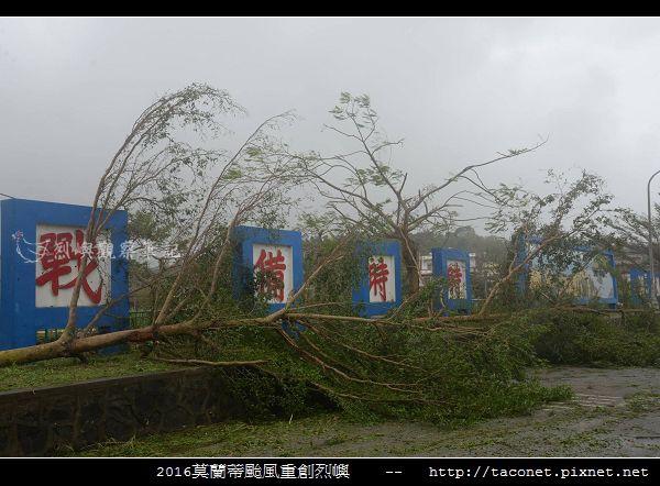 2016莫蘭蒂颱風肆虐後的烈嶼_010.jpg