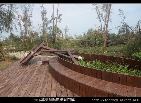 2016莫蘭蒂颱風肆虐後的烈嶼_013.jpg