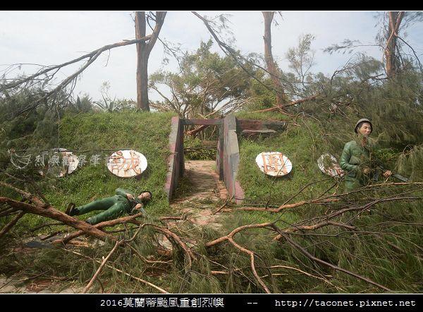 2016莫蘭蒂颱風肆虐後的烈嶼_014.jpg