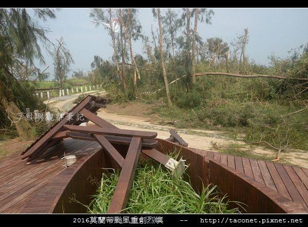 2016莫蘭蒂颱風肆虐後的烈嶼_015.jpg