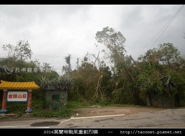 2016莫蘭蒂颱風肆虐後的烈嶼_019.jpg