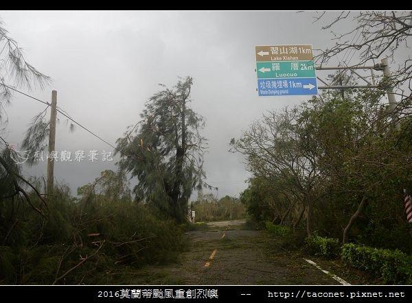 2016莫蘭蒂颱風肆虐後的烈嶼_020.jpg