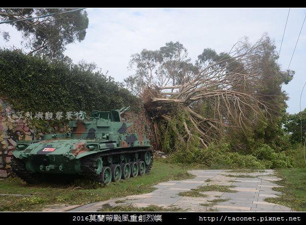 2016莫蘭蒂颱風肆虐後的烈嶼_024.jpg