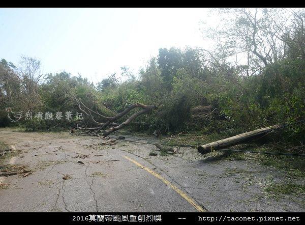 2016莫蘭蒂颱風肆虐後的烈嶼_028.jpg