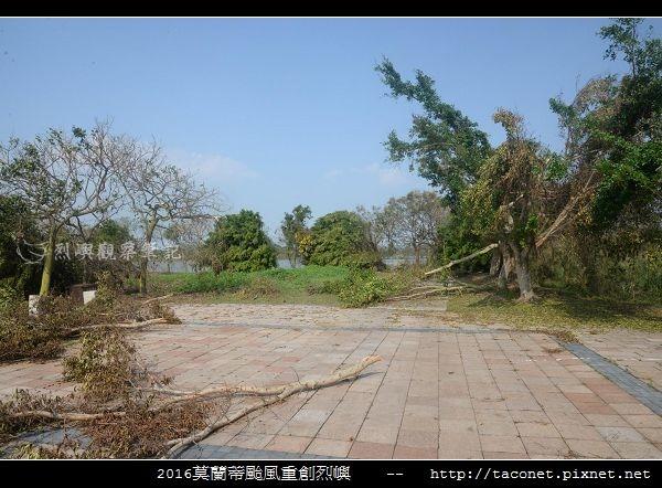 2016莫蘭蒂颱風肆虐後的烈嶼_032.jpg