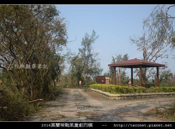 2016莫蘭蒂颱風肆虐後的烈嶼_034.jpg