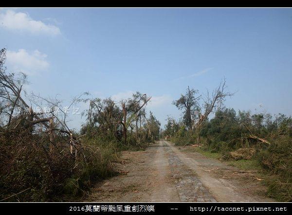 2016莫蘭蒂颱風肆虐後的烈嶼_035.jpg