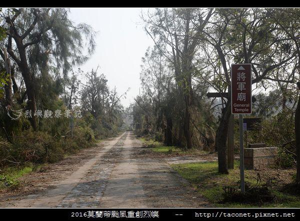 2016莫蘭蒂颱風肆虐後的烈嶼_036.jpg