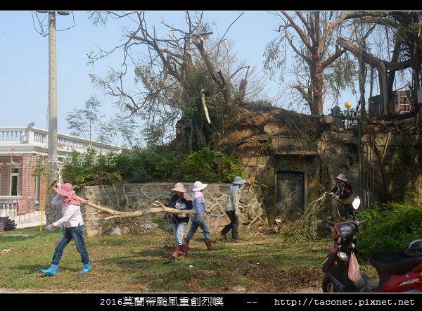 2016莫蘭蒂颱風肆虐後的烈嶼_037.jpg