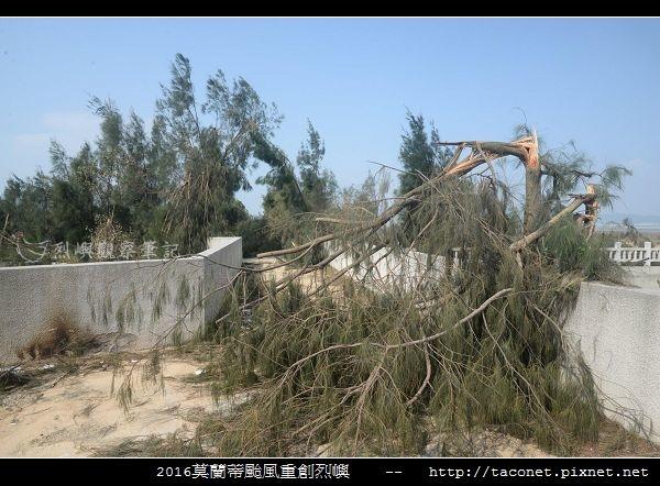 2016莫蘭蒂颱風肆虐後的烈嶼_038.jpg
