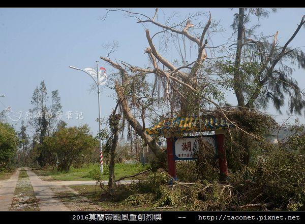 2016莫蘭蒂颱風肆虐後的烈嶼_041.jpg