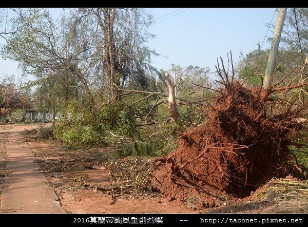 2016莫蘭蒂颱風肆虐後的烈嶼_047.jpg