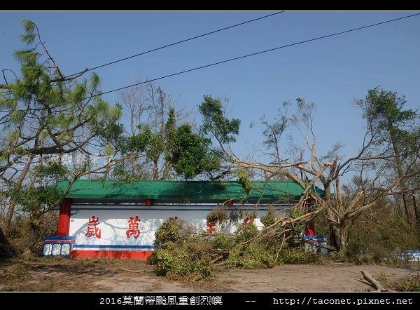 2016莫蘭蒂颱風肆虐後的烈嶼_051.jpg