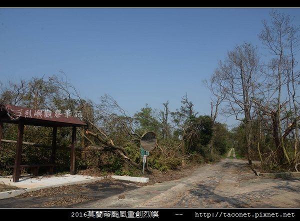 2016莫蘭蒂颱風肆虐後的烈嶼_054.jpg