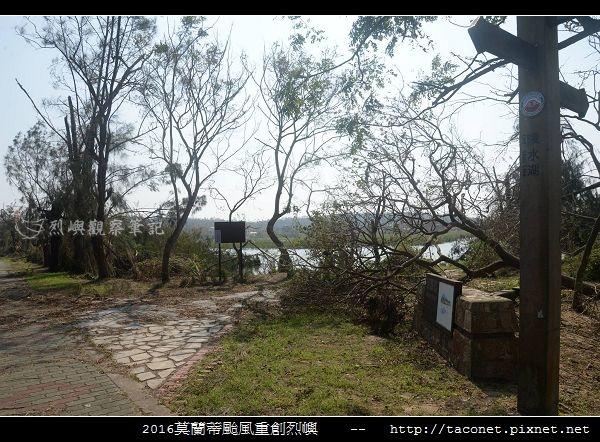 2016莫蘭蒂颱風肆虐後的烈嶼_057.jpg