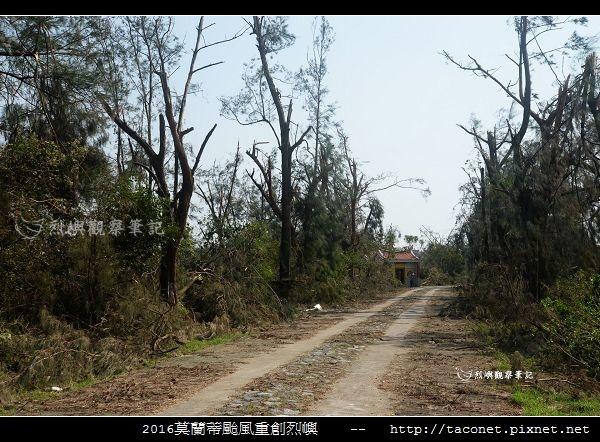 2016莫蘭蒂颱風肆虐後的烈嶼_063.jpg