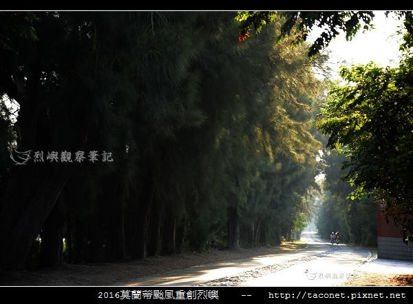 2016莫蘭蒂颱風肆虐後的烈嶼_064.jpg
