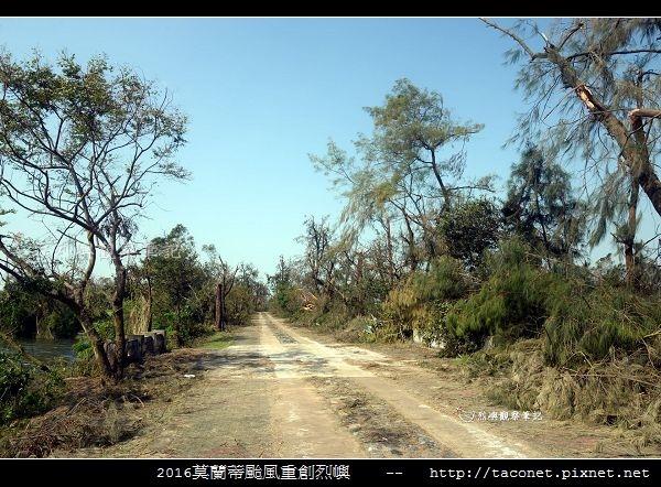 2016莫蘭蒂颱風肆虐後的烈嶼_065.jpg
