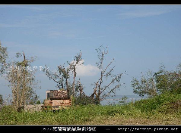 2016莫蘭蒂颱風肆虐後的烈嶼_068.jpg