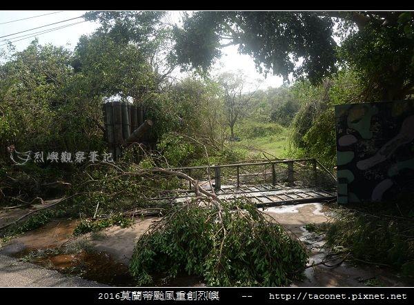 2016莫蘭蒂颱風肆虐後的烈嶼_069.jpg