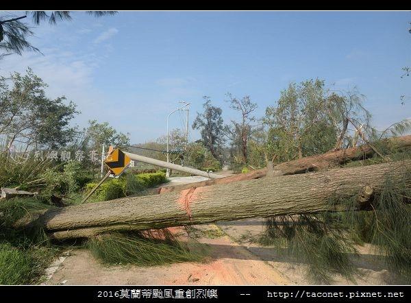 2016莫蘭蒂颱風肆虐後的烈嶼_074.jpg