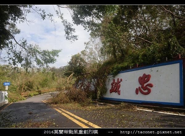 2016莫蘭蒂颱風肆虐後的烈嶼_079.jpg