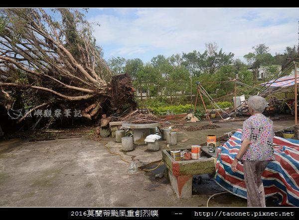 2016莫蘭蒂颱風肆虐後的烈嶼_082.jpg