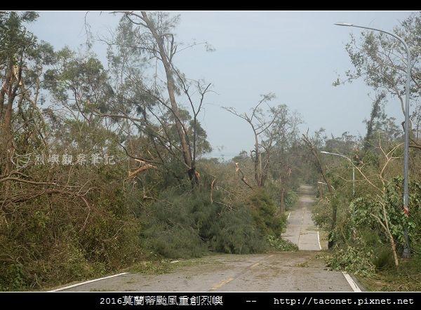 2016莫蘭蒂颱風肆虐後的烈嶼_083.jpg