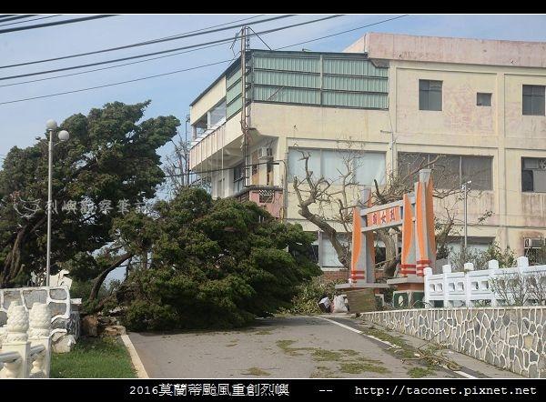 2016莫蘭蒂颱風肆虐後的烈嶼_088.jpg