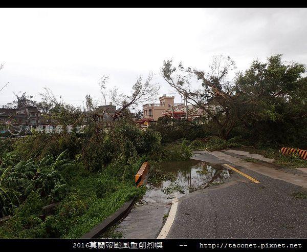 2016莫蘭蒂颱風肆虐後的烈嶼_091.jpg