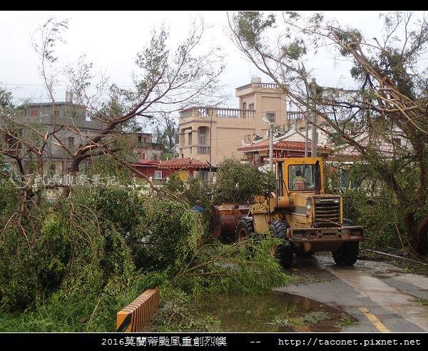 2016莫蘭蒂颱風肆虐後的烈嶼_097.jpg