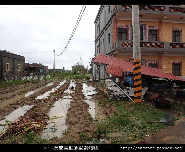 2016莫蘭蒂颱風肆虐後的烈嶼_098.jpg
