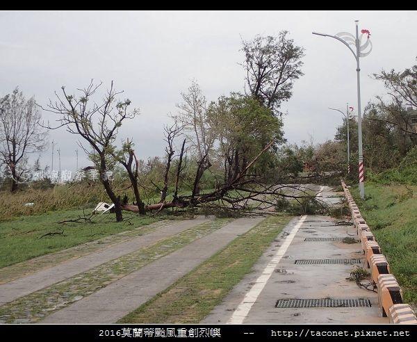 2016莫蘭蒂颱風肆虐後的烈嶼_102.jpg