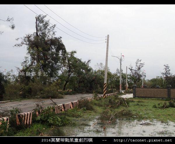 2016莫蘭蒂颱風肆虐後的烈嶼_105.jpg