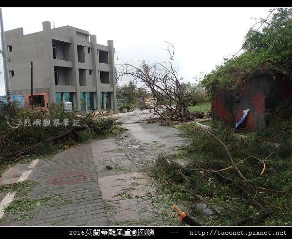 2016莫蘭蒂颱風肆虐後的烈嶼_106.jpg