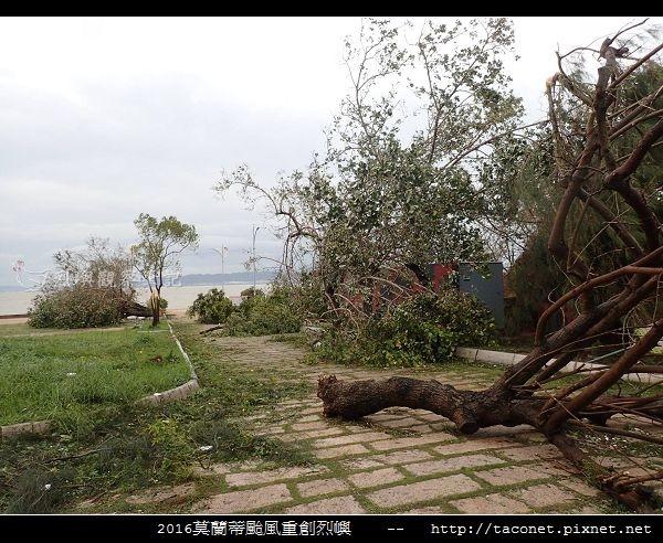 2016莫蘭蒂颱風肆虐後的烈嶼_107.jpg