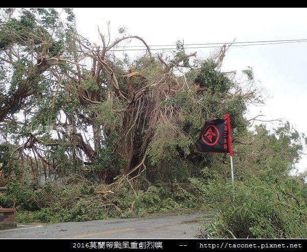 2016莫蘭蒂颱風肆虐後的烈嶼_111.jpg