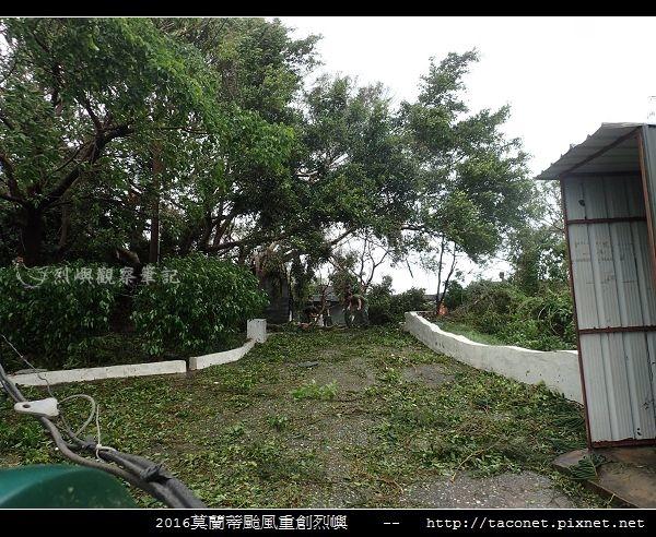 2016莫蘭蒂颱風肆虐後的烈嶼_119.jpg