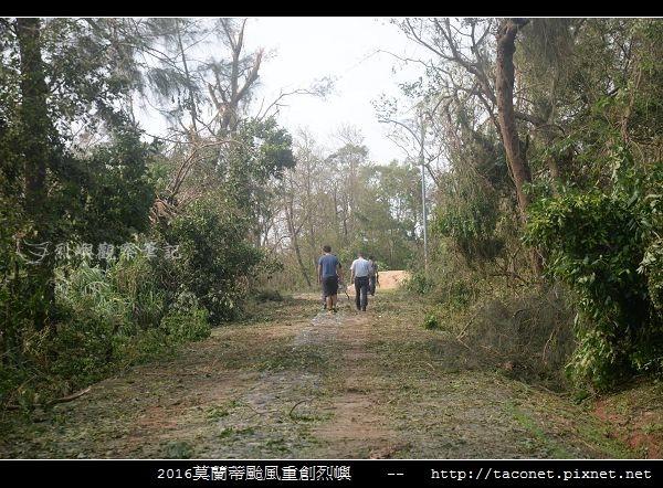 2016莫蘭蒂颱風肆虐後的烈嶼_128.jpg