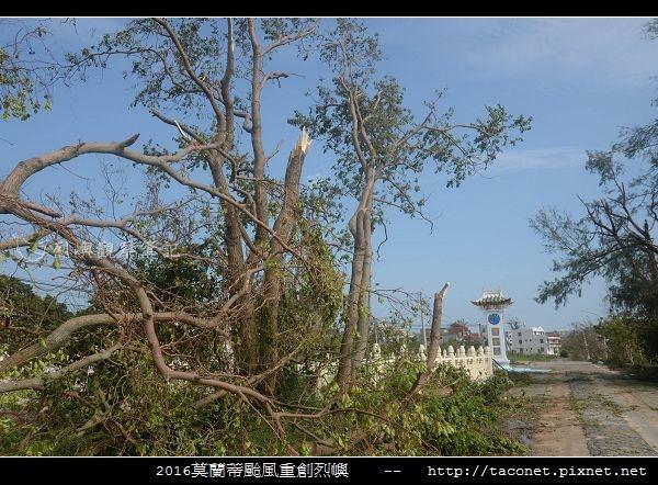 2016莫蘭蒂颱風肆虐後的烈嶼_129.jpg