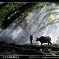 nEO_IMG_洪宗教攝影作品_17.jpg
