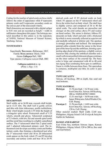 01- Huang & Fu- Margaritidae and Calliostomatidae_頁面_02.jpg
