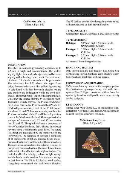 01- Huang & Fu- Margaritidae and Calliostomatidae_頁面_05.jpg
