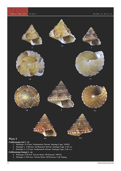 01- Huang & Fu- Margaritidae and Calliostomatidae_頁面_10.jpg